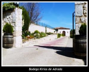 The winery Kirios de Adrada