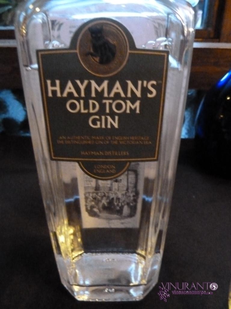Hayman's Old Tom.