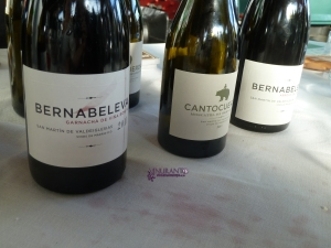 Bernabeleva Muscatel. Grano Menudo. Wines from Madrid.