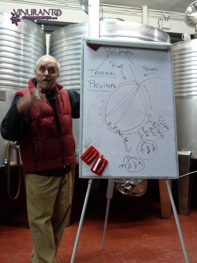 Carlos, winemaker of Qubél winery.